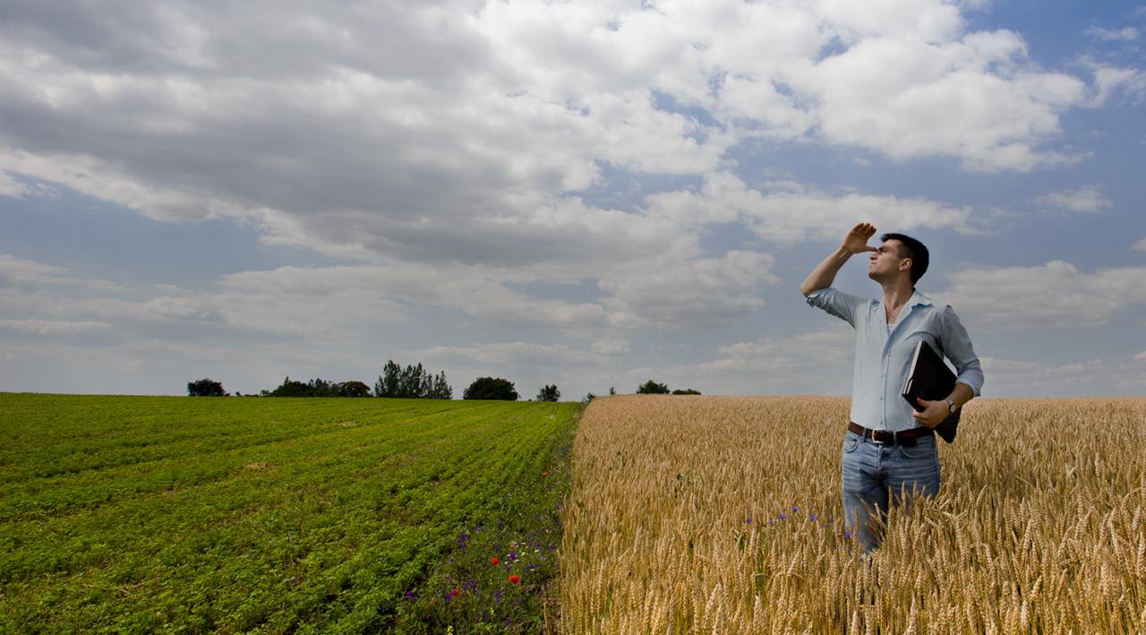 Météo agricole de précision
